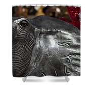 Crimson Tide For Christmas Shower Curtain by Kathy Clark