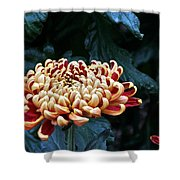 Crimson Tide Irregular Incurve Mum Shower Curtain