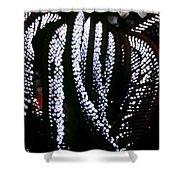 Crinoids 4 Shower Curtain