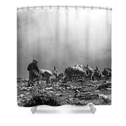 Donkey Train On Croagh Patrick Shower Curtain