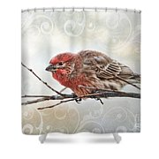 Croching Finch Shower Curtain