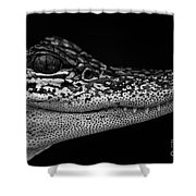 Crock's Look Black And White Shower Curtain