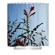 Crocosmia Sky Shower Curtain