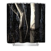 Crooked Stick Shower Curtain