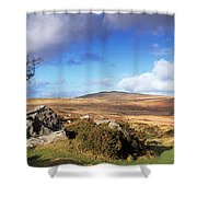 Crooked Tree At Feather Tor, Staple Shower Curtain