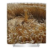 Crop Circle At Bishops Canning Shower Curtain