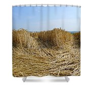 Crop Circle Close-up Shower Curtain