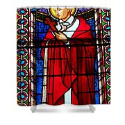 Cross And Red Robe Shower Curtain
