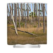 Crossed Trees Shower Curtain