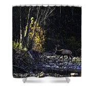 Crossing The Buffalo At Daybreak Shower Curtain