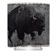 Crossing The Plains Shower Curtain