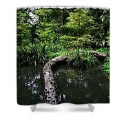 Crossing The Pond Shower Curtain