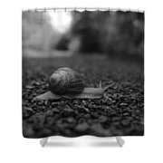 Crossing The Road Shower Curtain