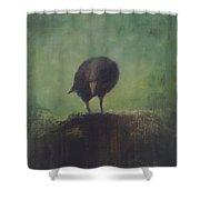Crow 12 Shower Curtain