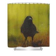 Crow 13 Shower Curtain