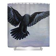 Crow Flight Shower Curtain