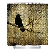 Crow In Damask Shower Curtain