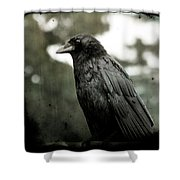 Crow In The Summer Rain Shower Curtain