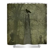 Crow On Spire Shower Curtain