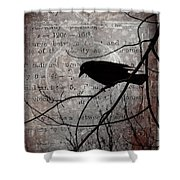 Crow Thoughts Collage Shower Curtain