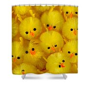 Crowded Chicks Shower Curtain