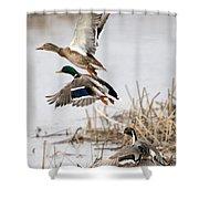 Crowded Flight Pattern Shower Curtain
