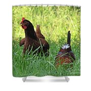 Crowing Rooster Shower Curtain