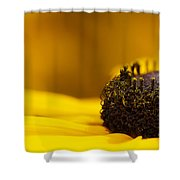 Crowning Sunshine Shower Curtain