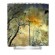 Crows Colors Shower Curtain