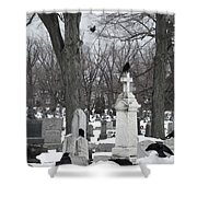 Crows In Gothic Winter Wonderland Shower Curtain