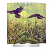 Crows Of The Corn Shower Curtain