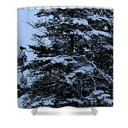 Crows Perch - Snowstorm - Snow - Tree Shower Curtain