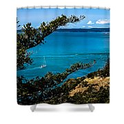 Cruising Shower Curtain