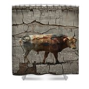 Crumbling Signage Painted Barn  Shower Curtain