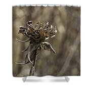 Crunchy Shower Curtain