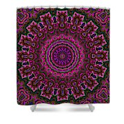 Crushed Pink Velvet Kaleidoscope Shower Curtain