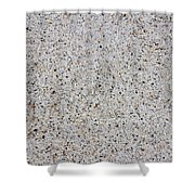 Crushed Shell Sidewalk Shower Curtain