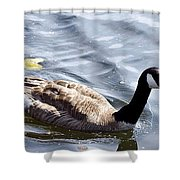 Crusing The Lake Shower Curtain