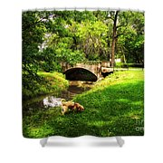 Cruz At Deer Creek Bridge Dwight Il Shower Curtain