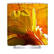 Crystal Ball Project 107 Shower Curtain