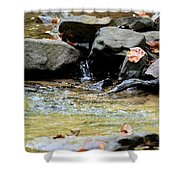 Crystal Clear Waters Of Hurricane Branch Shower Curtain