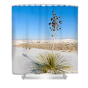 Crystal Dune Tree At White Sands National Monument In New Mexico. Shower Curtain