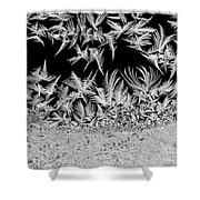 Crystal Feathers Shower Curtain