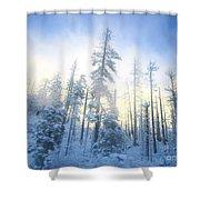 Crystal Harmony Shower Curtain