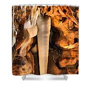 Crystal King Shower Curtain