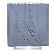 Crystal Mornings Shower Curtain