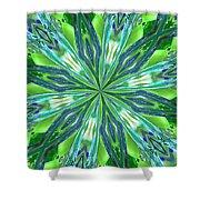 Crystal Ocean Shower Curtain by Donna Blackhall