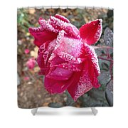 Crystal Rose Shower Curtain