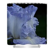 Crystal Ruffles Shower Curtain