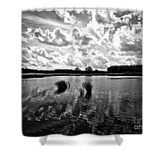 Cultivated Nature Shower Curtain